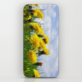 Dandelion meadow iPhone Skin