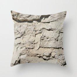 Barn Stone Wall Throw Pillow