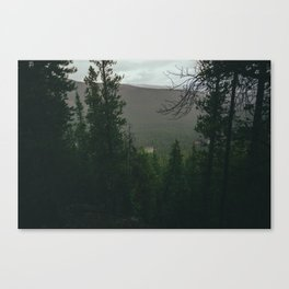 Overcast Forest Canvas Print
