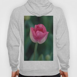 The Beauty of Pink Hoody