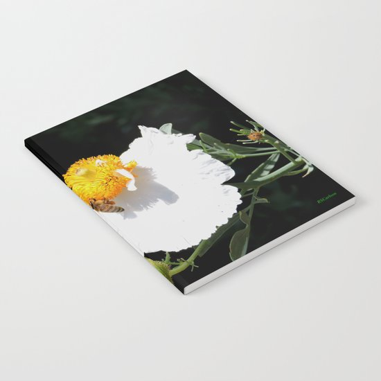 Matilija Poppy Notebook