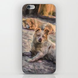 Two dogs resting iPhone Skin