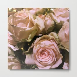 Shabby Chic Soft Peach-Pink Roses Metal Print