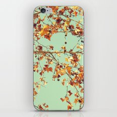 En los árboles iPhone & iPod Skin