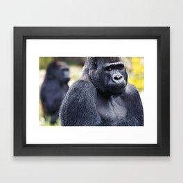 Hello Mr. Gorilla Framed Art Print