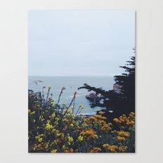 Floral Coast at Dusk Canvas Print