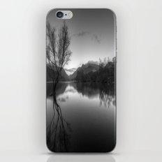Tree Lake iPhone & iPod Skin