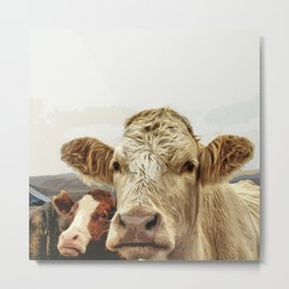 A cow greeting is like no other Metal Print