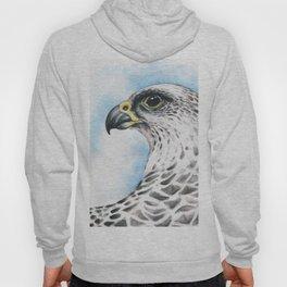 Gyr Falcon Hoody
