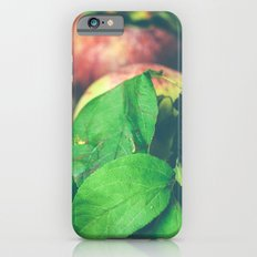Autumn Apples iPhone 6s Slim Case