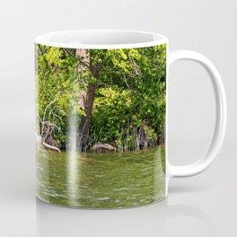Lake Itasca - Minnesota, USA 12 Coffee Mug