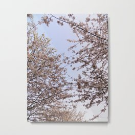 Spring Time Flowers Pt.2 Metal Print