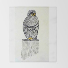 Fine Art New Zealand  Falcon in Graphite and Charcoal on 300 gsm  Throw Blanket