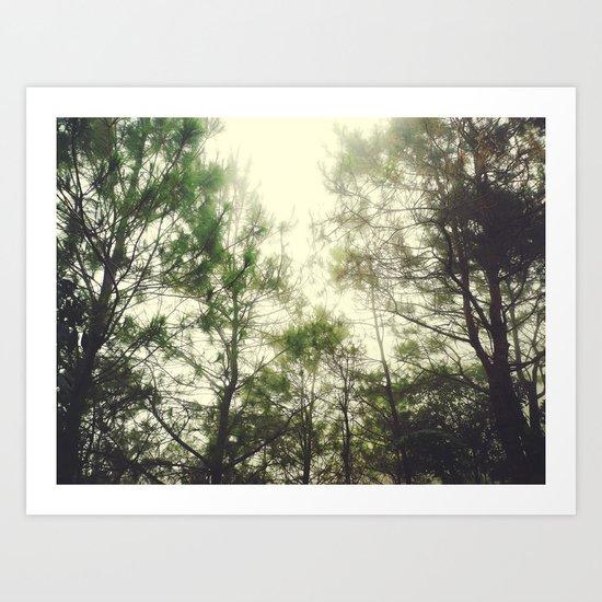 One Misty Morning Art Print