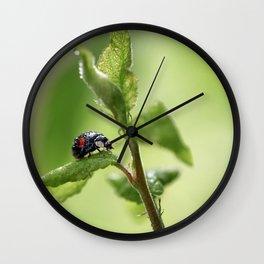 Wild. Wall Clock