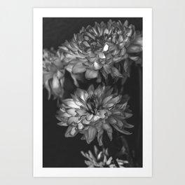 Monochrome Floral Art Print