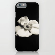 Japanese Anemone  iPhone 6s Slim Case
