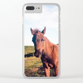 Dartmoor Pony Portrait Clear iPhone Case