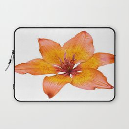 Coral Colored Lily Isolated on White Laptop Sleeve