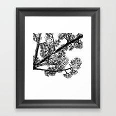 Cherry Blossom #6 Framed Art Print
