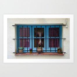 Horse and Window Art Print