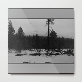Niveous Metal Print