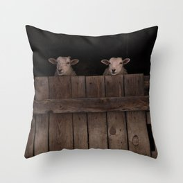 """Inqusitive"" Sheep Throw Pillow"