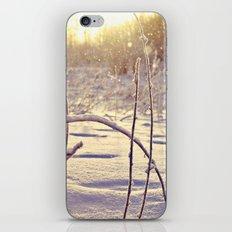 Alaskan Snowfall iPhone Skin