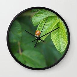 Little Lady Bug Wall Clock