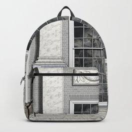 Window o1c Backpack