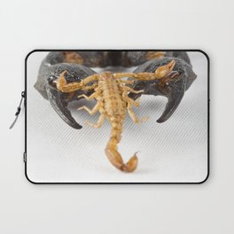Against the Odds Laptop Sleeve