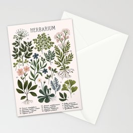 Herbarium ~ vintage inspired botanical art print ~ white Stationery Cards