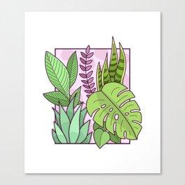Framed Plants Canvas Print
