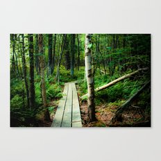 Let's Explore the World Together - Color Canvas Print