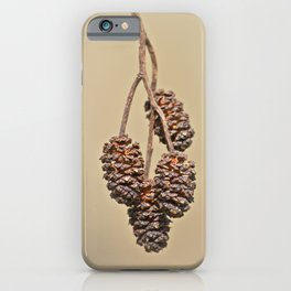 Little pine cones from Alder tree - Minimal Photography iPhone Case