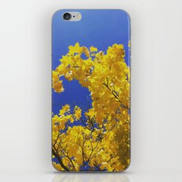 POP-Foliage iPhone Skin