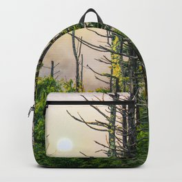 The Sun breaks through the Mist in a Smoky Mountain Forest Backpack