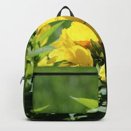 What's Up Buttercup? Backpack