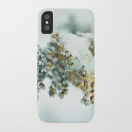 Frost & beauty iPhone Case