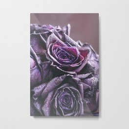 Macro photography of purple roses with raindrops. Fantasy and magic concept. Selective focus. Metal Print