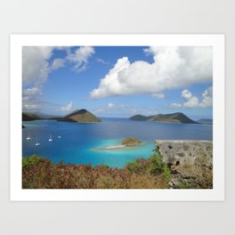 Water Lemon Cay, St. John, Virgin Islands Art Print