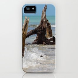 Weathered Mangroves iPhone Case