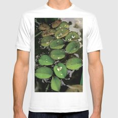 Mini Water Lilies and Water Bug White MEDIUM Mens Fitted Tee