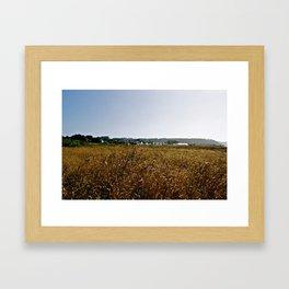 Mendocino Fields Framed Art Print