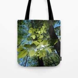 Sunlight Canopy IV Tote Bag