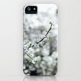 Holland Park #4 iPhone Case