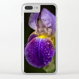 Bearded Iris Clear iPhone Case