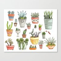 succulents Canvas Prints featuring Potted Succulents by Brooke Weeber