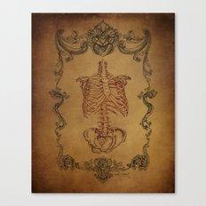 Scrolls & Bones Canvas Print
