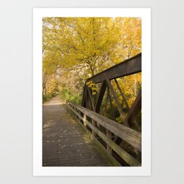 Fox River Bridge Art Print